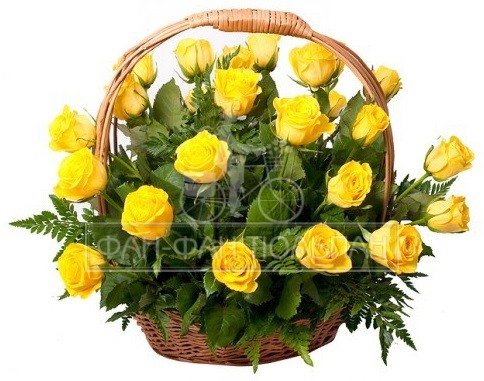 Basket-yellow-roses (1)